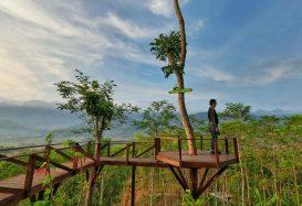 Watching Sunrise in Yogyakarta